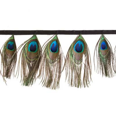 Pávatoll rojt - GREEN/BLUE